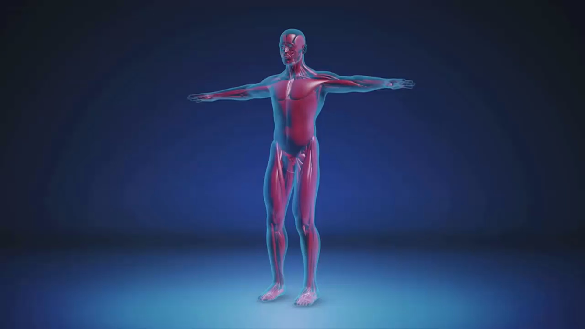 İnsan bədənində yeni orqan tapılıb