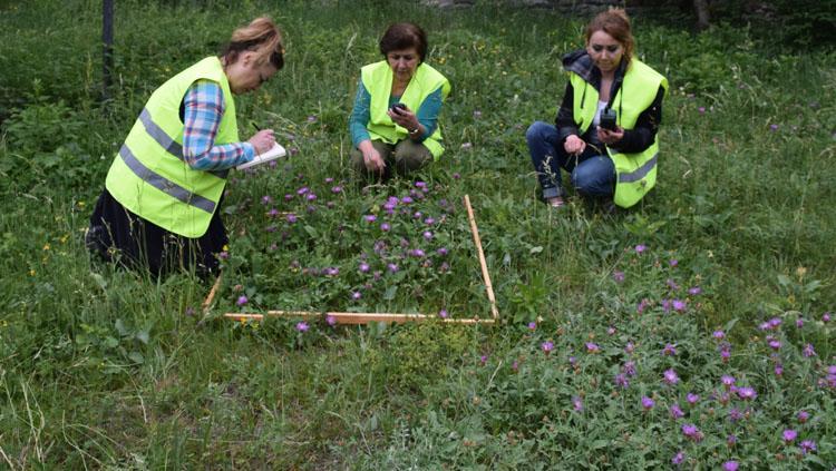 Alimlərimiz nadir bitki növlərinin azalmasına səbəb olan faktorları müəyyənləşdiriblər