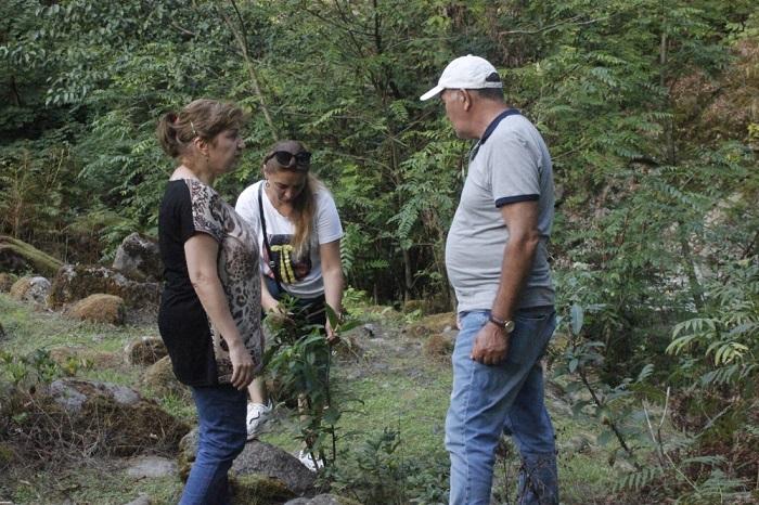 Dendrologiya İnstitutu Hirkan Milli Parkı ilə əməkdaşlıq edəcək