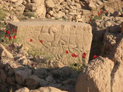 Dünyanın ən qədim dini mərkəzi aşkar edilib