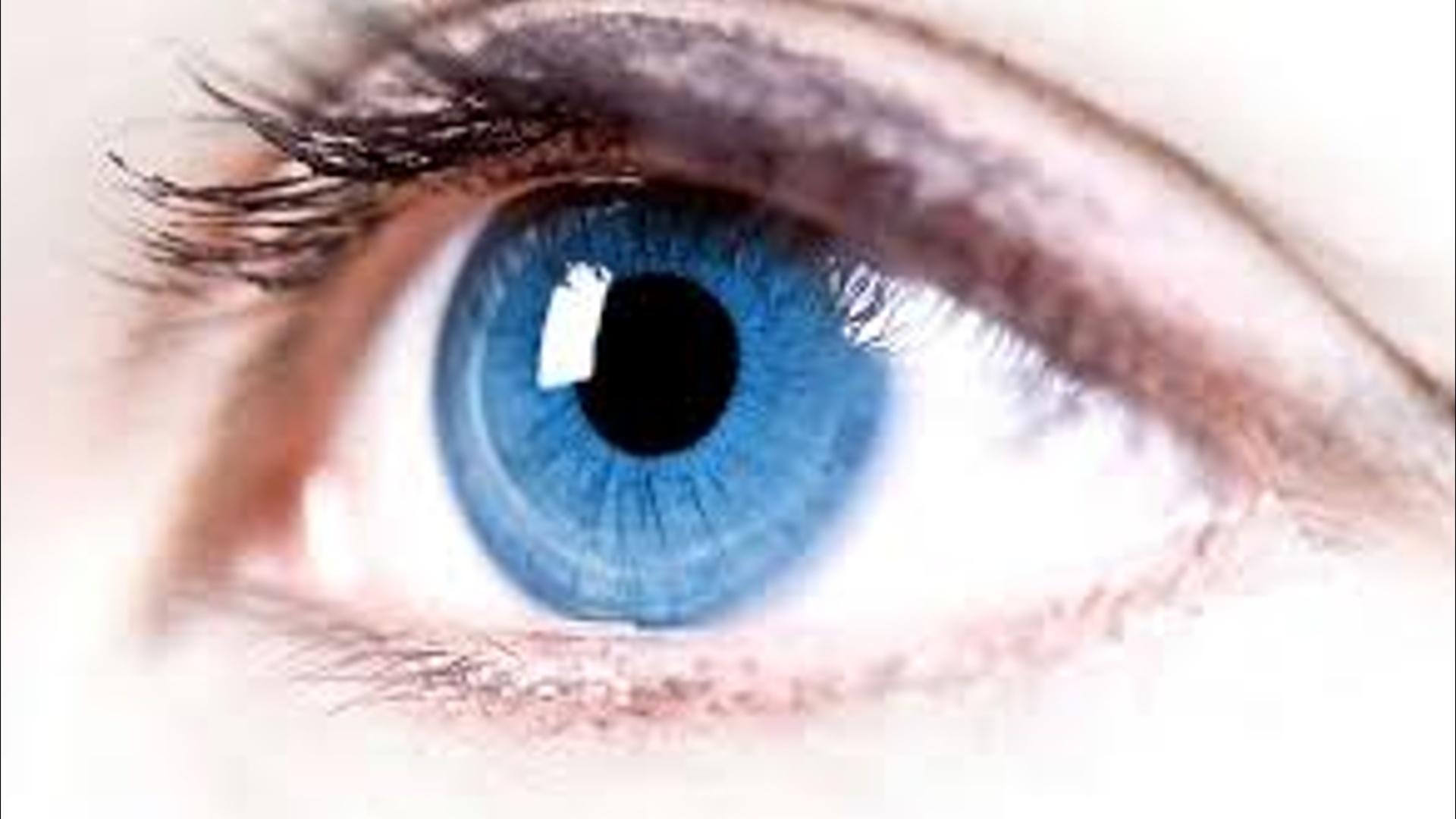 Alimlər labaratoriya şəraitində gözün torlu qişasını əmələ gətiriblər