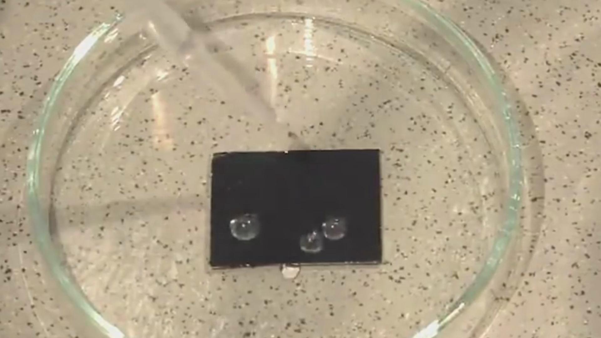 İlan dərisi kimi özünü yeniləyən hidrofobik material hazırlanıb
