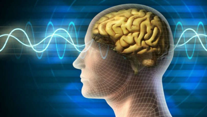 İnsanların beyinləri də bir-birinə Wi-Fi kimi bağlanır