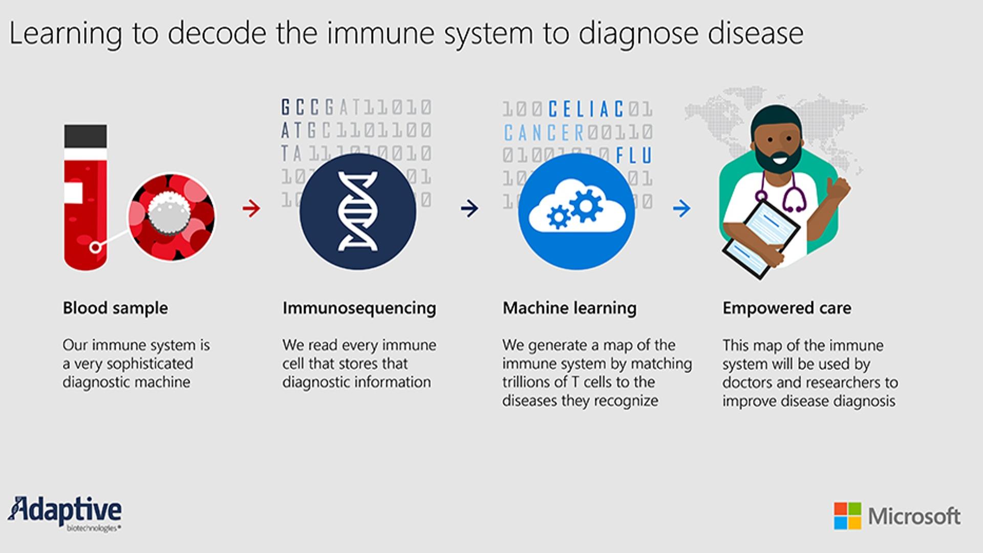 """""""Microsoft"""" insanın immun sisteminin """"xəritəsini"""" hazırlayacaq"""
