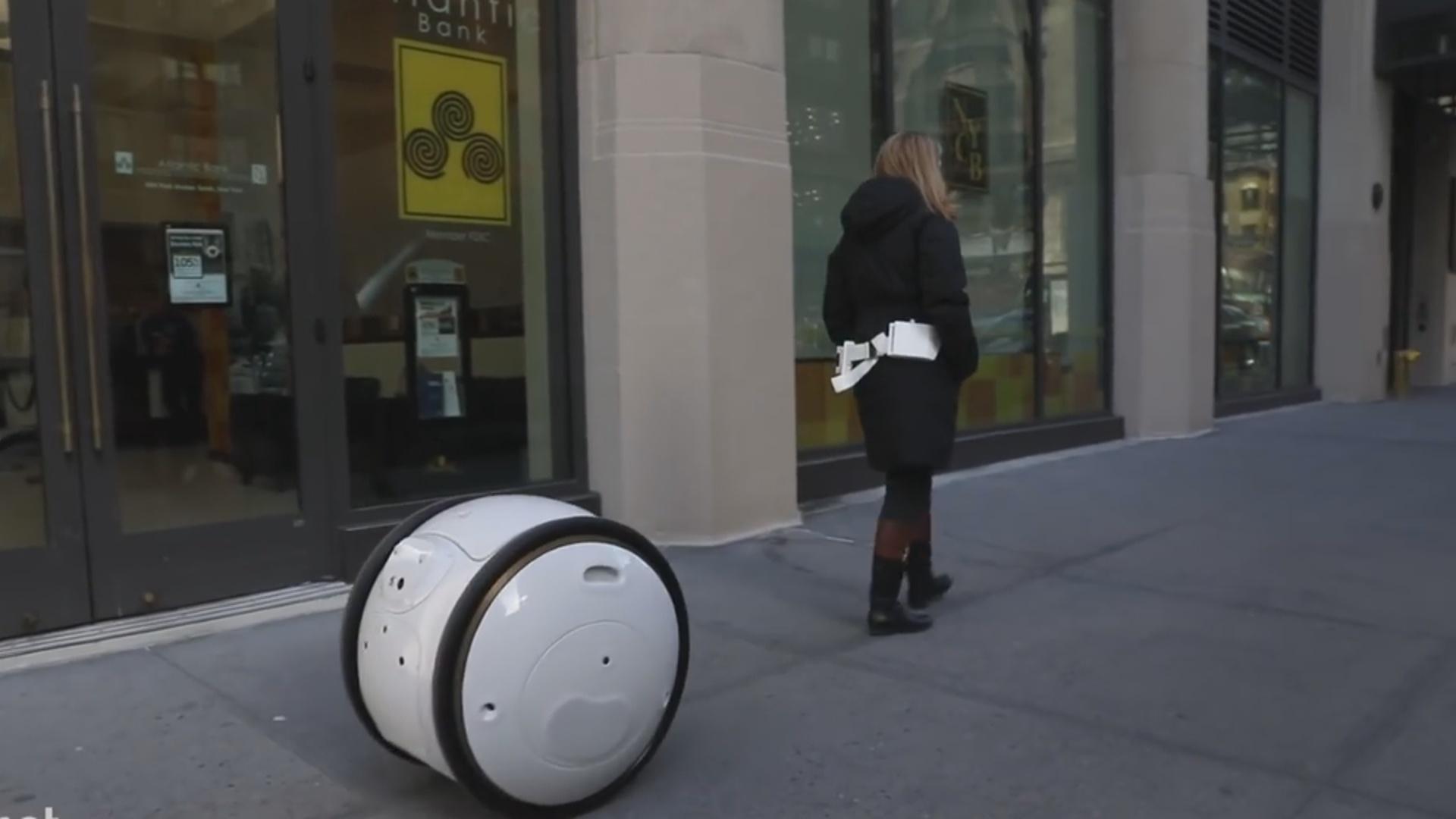 Robot çamadan 20 kiloqramadək yük daşıya bilir