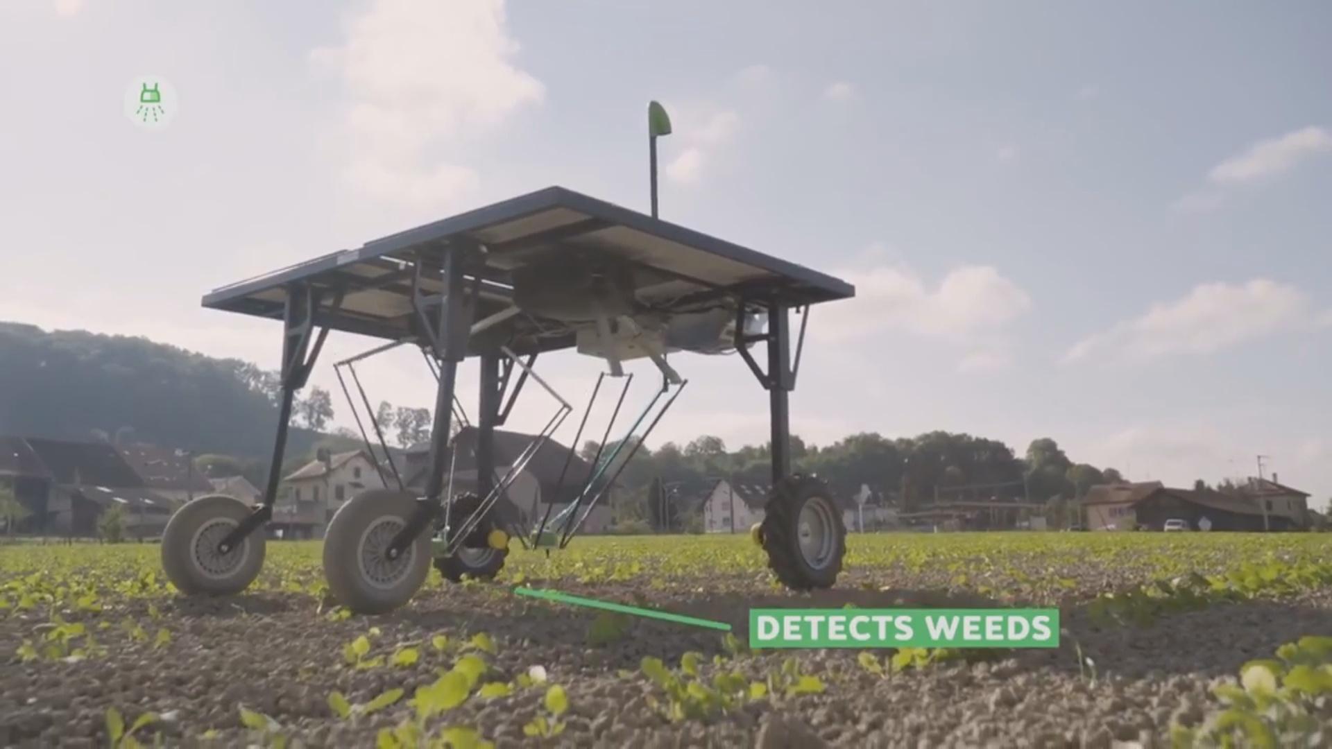 Robotlar fermerlərin işini asanlaşdıracaq