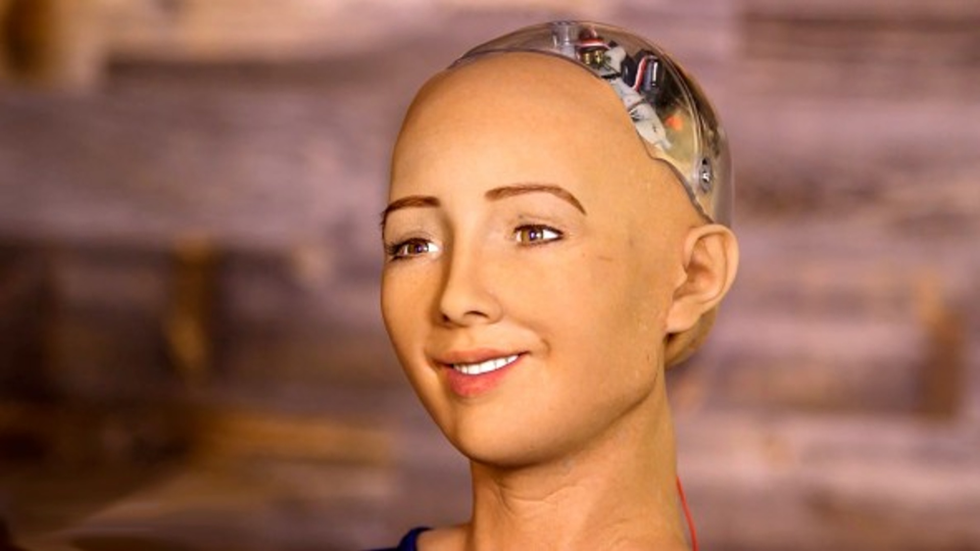 """Robot Sofiya """"Ümumdünya süni intellekt"""" üçün vəsait toplayır"""