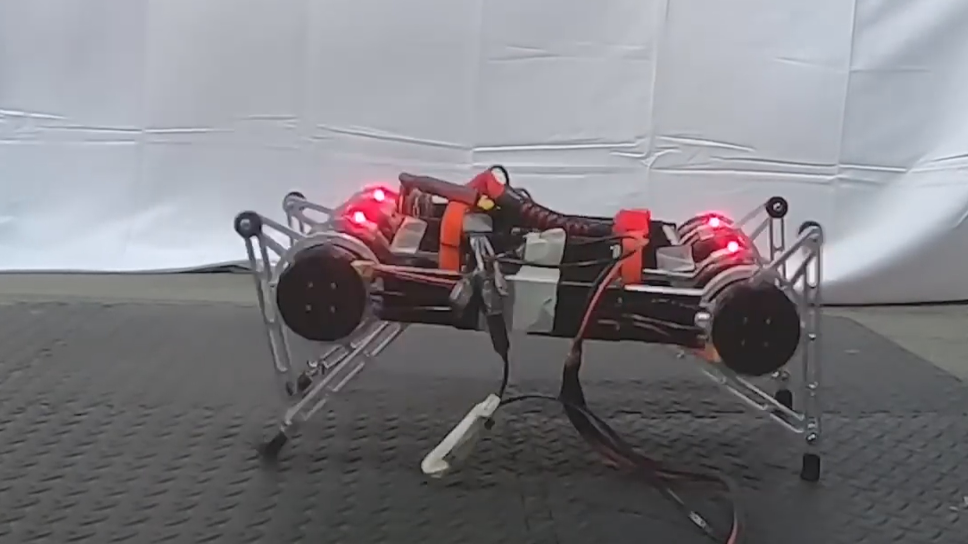 Süni intellekt robotlara hərəkət etməyi öyrədir