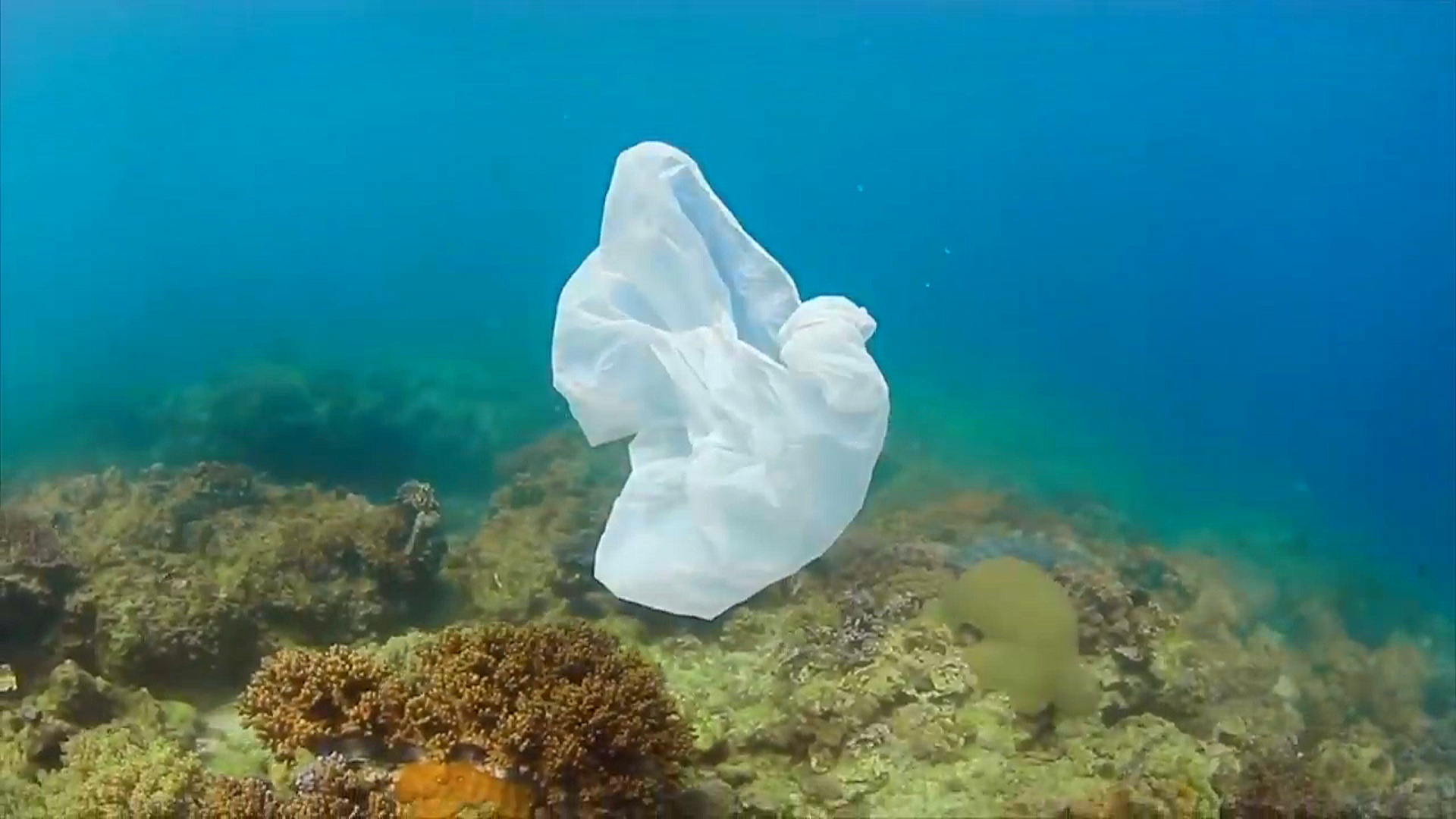 Okean dibində 14,4 milyon ton mikroplastik tullantı var