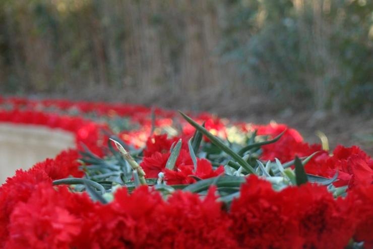 20 yanvar - milli birliyin və azadlığın qələbə çaldığı gündür